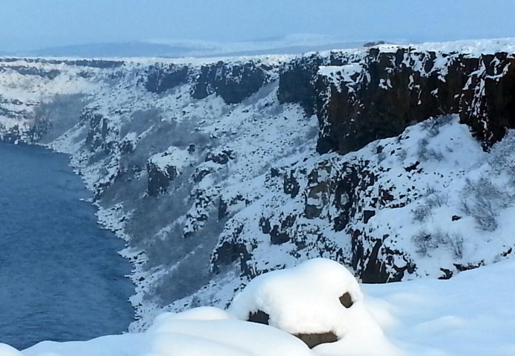 Häckningsmiljö för jaktfalk på Island.