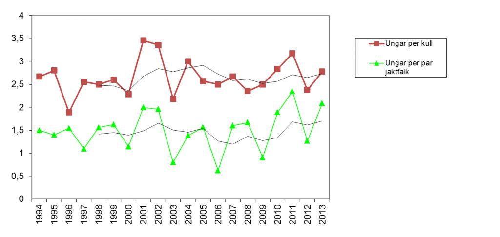 Figur 1. Diagrammet visar häckningsframgången för jaktfalk under perioden 1994-2013 i Jämtlands län uttryckt i genomsnittligt antal ungar per lyckad häckning respektive antalet funna par. För respektive variabel visas även ett fem-års medelvärde. Trenderna visar på en relativt stabil häckningsframgång under perioden. Källa: Projekt Jaktfalk och Länsstyrelsen i Jämtlands län.